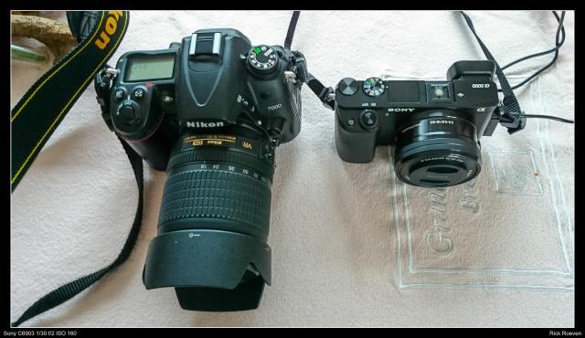 De Nikon D7000 naast de Sony A6000 beide met kitlens